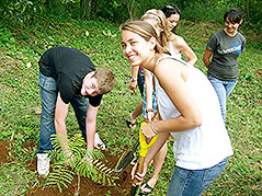 Teen students planting a tree